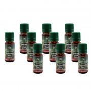 Set 10 Uleiuri Parfumate Aromaterapie Aroma Land Oil, 10 ml, Diverse Arome